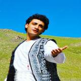 Shekib Sozan's image